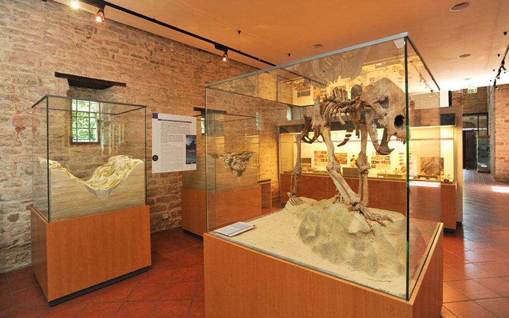 Museo speleo paleontologico e archeologico di Genga